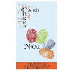Piemonte Chardonnay NOI