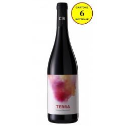 """Calabria Rosso IGP 2016 """"Terra"""" - Cantine Benvenuto (cartone 6 bottiglie)"""