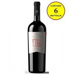 """Nero d'Avola Terre Siciliane IGT """"Capitolo Uno"""" - Costantino Wines"""