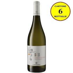 "Müller Thurgau Terre Siciliane IGT ""Aria Siciliana"" - Costantino Wines (cartone da 6 bottiglie)"