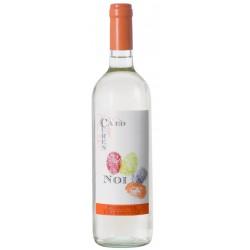 Piemonte Chardonnay D.O.C. 2017 NOI