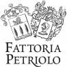 FATTORIA PETRIOLO
