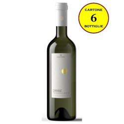"Terre Siciliane IGT Bianco ""Chamanit"" - Costantino Wines"