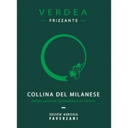 Verdea Collina del Milanese IGT frizzante - Vigneto Faverzani